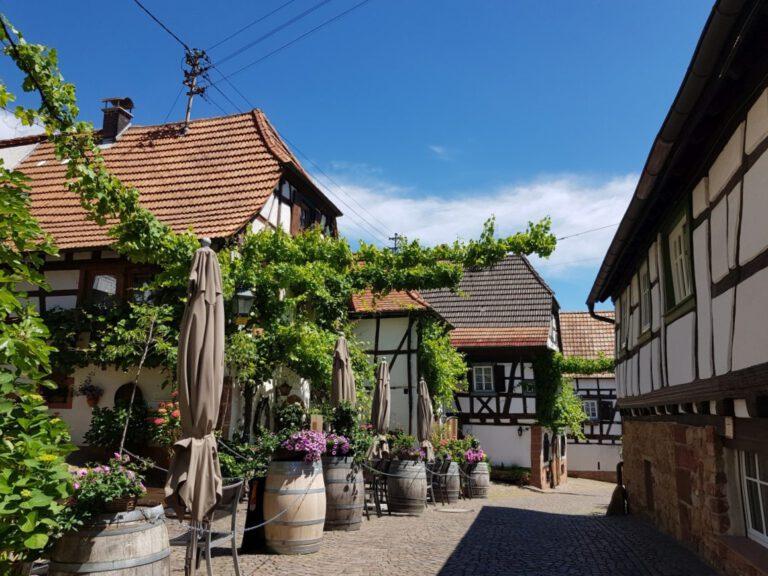 Vom Allgäu in die Pfalz