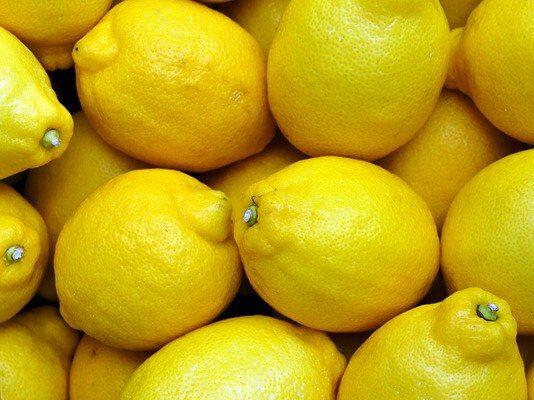 Zitronen-medaillons